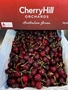 Picture of CHERRY ÚC - CHEERY HILL ORCHARDS ( 500gr)